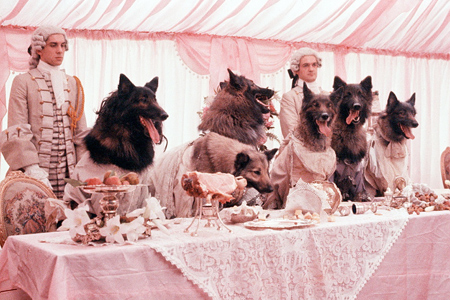 Wolf Transformation Sequence The Company Of Wolves ...