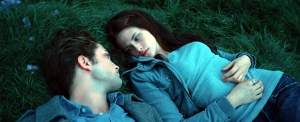 Bella couldn't help noticing that Edward had dry skin on his nose