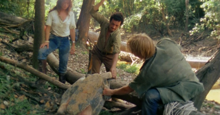 The scene in which a giant turtle is behead and torn apart is probably the most shocking I've seen in any film.