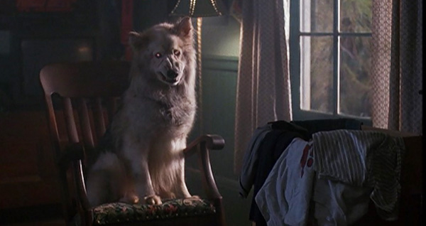 The Thing Movie Dog Wolf