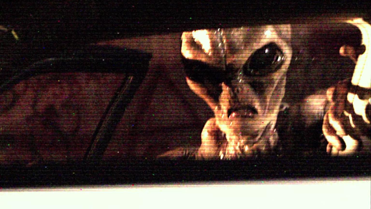 Carl Sagan on Alien Abduction